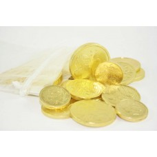 Gold Coin Money Bag 100g